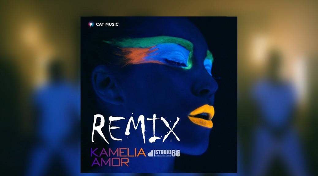 Kamelia_remix Amor